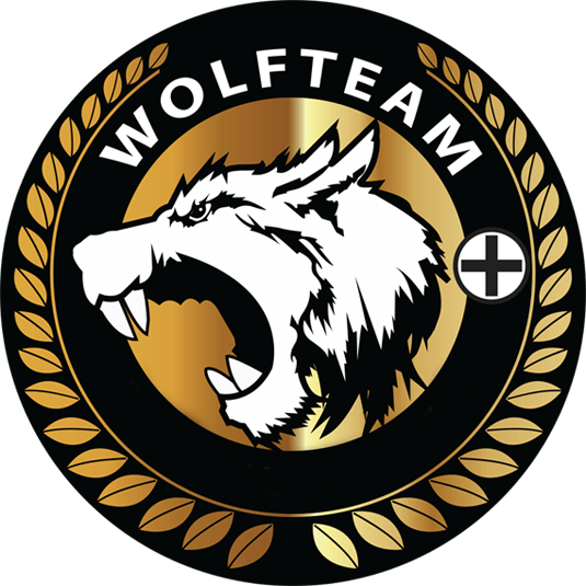 Wolfteam Guncel Hack